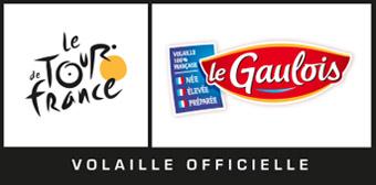 2015 Le Gaulois Logo